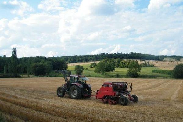 Chaque année, l'équivalent de 3 terrains de foot disparaissent en Ile-de-France