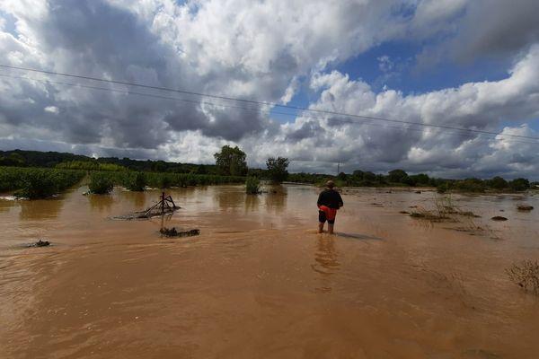 Un riverain de Gallargues-le-Montueux contemple les vignes inondées, après l'épisode cévenol qui a touché près de 60 communes gardoises, mardi 14 septembre 2021.