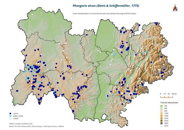 Bien que rare en France, l'azuré des mouillères (Phengaris Alcon) est présent en Auvergne-Rhône-Alpes. La région a donc un rôle important à jouer dans sa préservation.