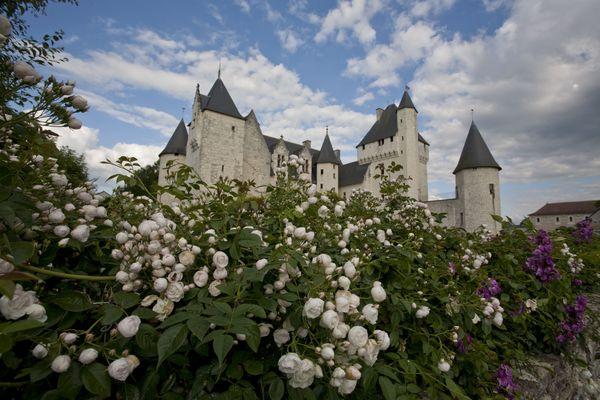 Le rosier liane blanc à l'entrée du château du Rivau.