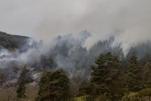 Un feu de forêt s'est déclaré à Saint-Haon en Haute-Loire ce mardi 20 avril : 12 hectares de forêt sont partis en fumée.