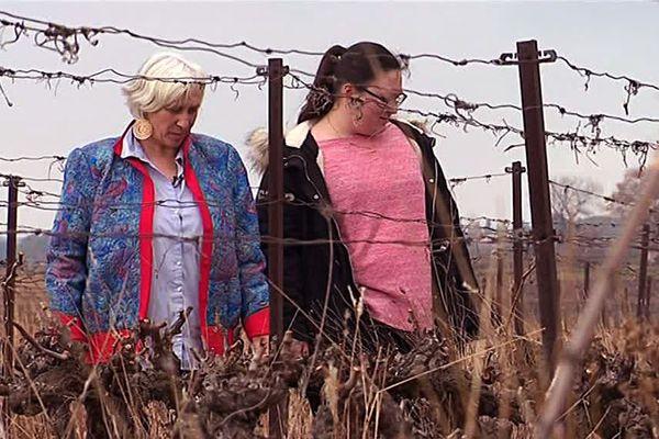 Lise et sa fille Jeanne arpentent leur domaine viticole à Juvignac près de Montpellier gérée par des femmes depuis 4 générations.