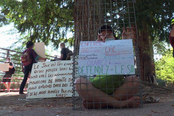 Lyon : nouvelle action des militants de la cause animale au Parc de la Tête d'Or. Ils réclament la fermeture du zoo...
