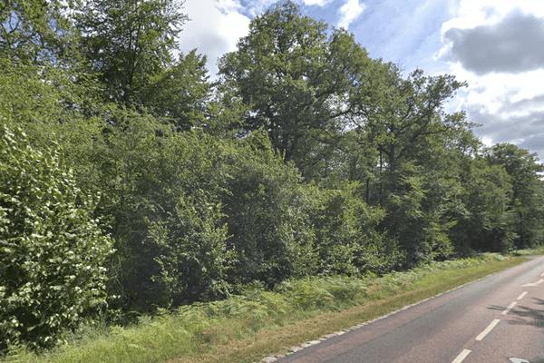 La forêt d'Ermenonville dans l'Oise est interdite au public dans le cadre du confinement lié au coronavirus. Tout comme les forêtsde Hez, Laigue, Chantilly, Halatte et Compiègne.
