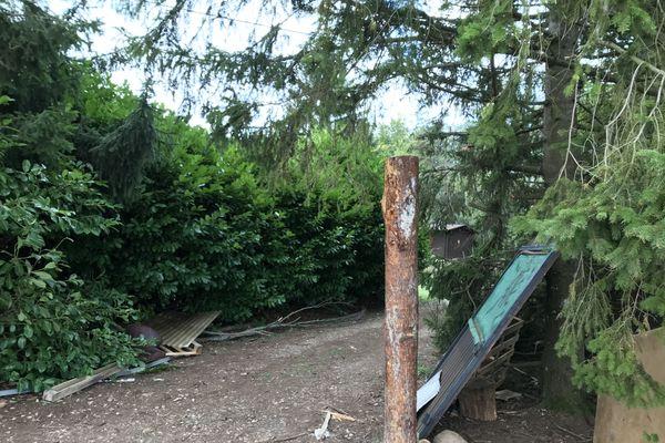 La ZAD de Roybon installée depuis 6 ans dans la forêt de Chambaran (Isère) est évacuée, ce mardi 13 octobre.