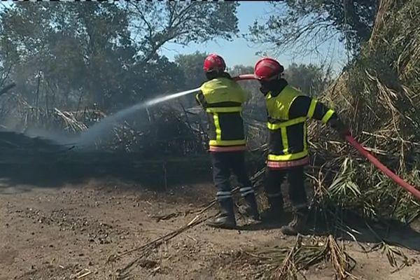 Pompiers luttant contre l'incendie d'Argelès-sur-Mer