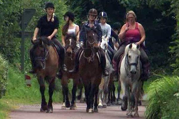 Equitation au haras des Louveaux au Molay Littry