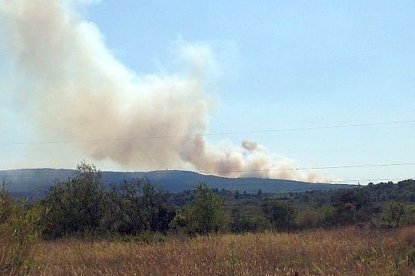 Entre Montbazin, Poussan et Gigean (Hérault) - un incendie progresse sur 20km - 31 juillet 2014.