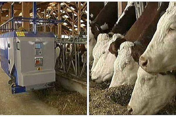 Les associés du Gaec des Forges, à Cussey-lès-Forges, en Côte d'Or, ont investi dans des robots pour entretenir leur troupeau de 140 vaches