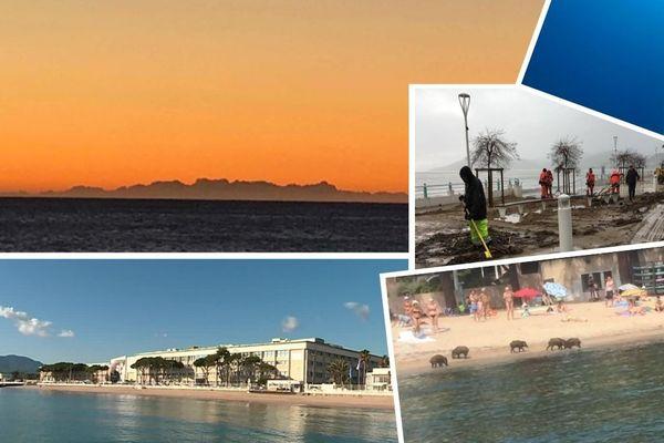 Sur la Côte d'Azur, l'année 2019 a été riche en actualités.