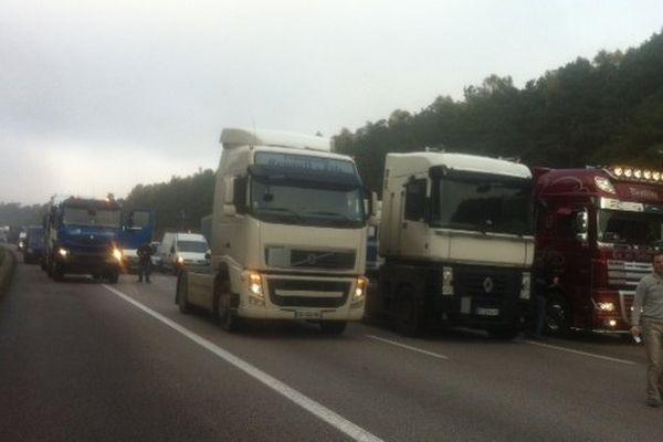 Des poids-lourds lors de la journée de mobilisation du 16 novembre dernier contre l'écotaxe au rond-point des vaches à Saint-Etienne-du-Rouvray.