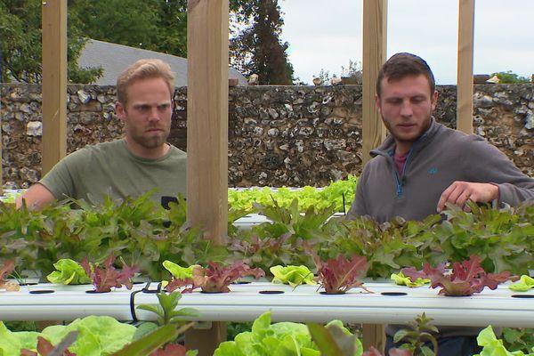 Edouard Coral (à gauche) et Nicolas Fessard-Simon (à droite), ont testé leur système aquaponique pendant deux ans avant de planter leurs premières salades