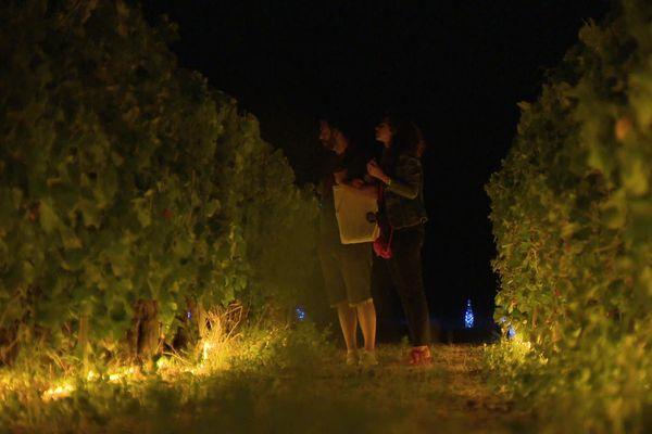 Entre vignes et lumières, une déambulation nocturne pour apprendre à connaitre l'histoire et les paysages de la Drôme provençale