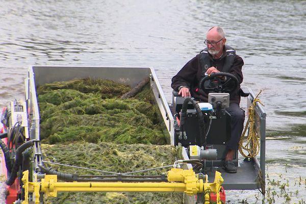 Une faucardeuse fauche les algues dans le port de Saint-Jean-de-Losne, en Côte-d'Or.