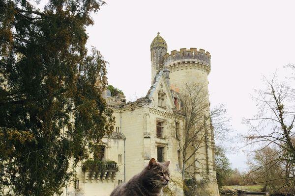 Le château de la Mothe-Chandeniers (79)