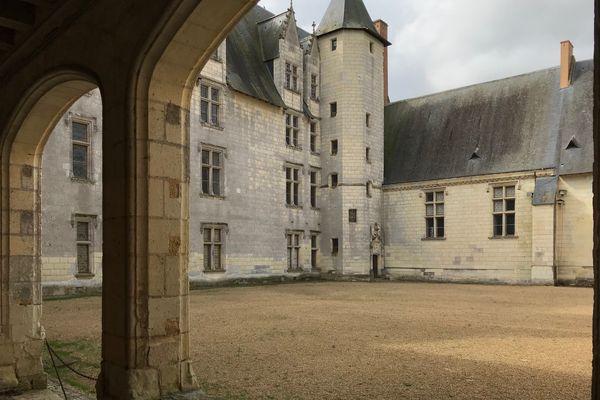 Dans la cour du Plessis-Bourré ont été tournées plusieurs scènes du film Peau d'Âne de Jacques Demy en juillet 1970