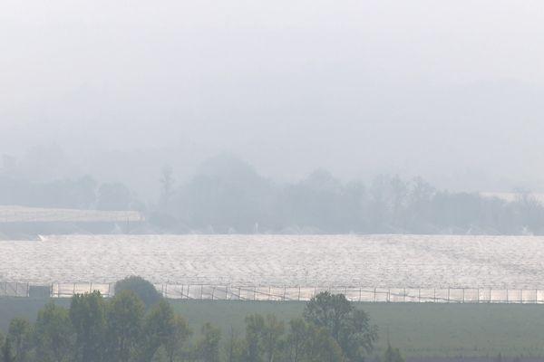 Afin de protéger leurs vergers, des arboriculteurs de Lavaur dans le Tarn ont allumé des feux mardi 13 avril dégageant une épaisse fumée sur l'ensemble du secteur.