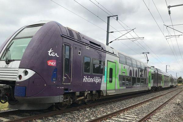 Un train TER sur la ligne entre Grenoble et Lyon