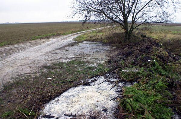 Le corps d'Elodie Kulik a été retrouvé dans ce champ situé à Tertry dans la Somme