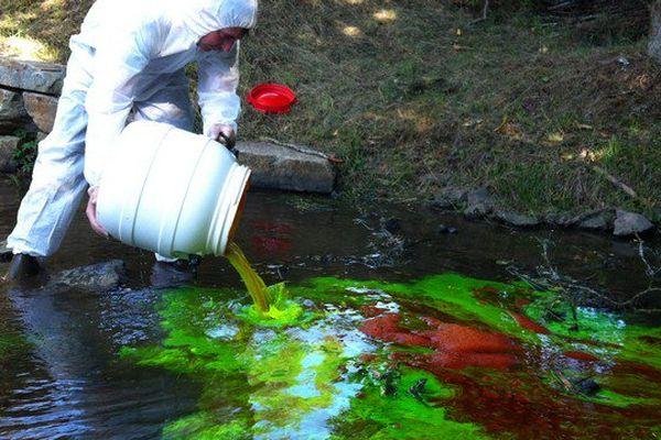 Cette coloration est sans danger pour l'environnement.