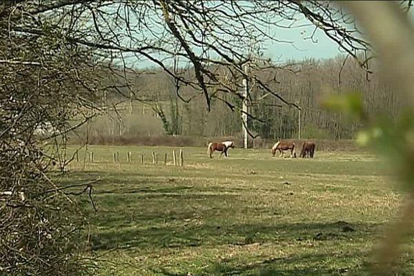 Les alentours du village de Frontenaud, en Saône-et-Loire.