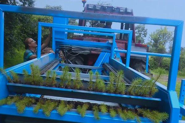 Une entreprise landaise a mis au point une machine forestière qui devrait permettre de planter 6 à 8 hectares de pins par jour