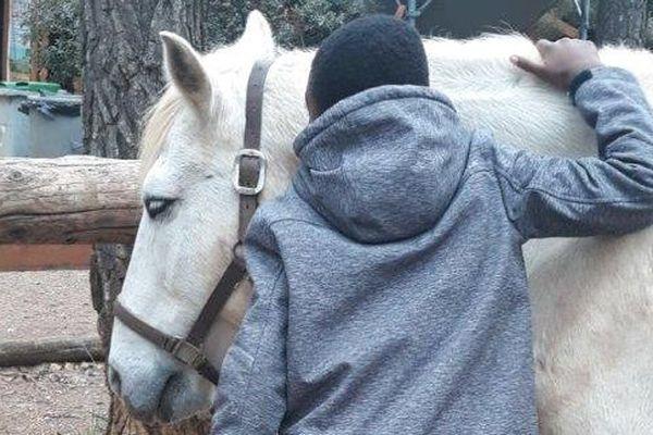 Au pansage, un lien très fort s'est créé entre Hakim et le cheval.