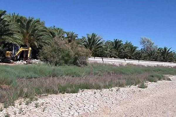 Vic-la-Gardiole (Hérault) - une palmeraie et une digue détruites à la demande de la justice car construites illégalement - juin 2016.