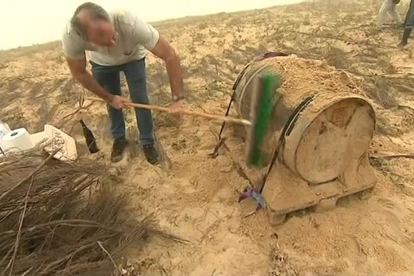 Les barriques sorties des dune de Messanges ce vendredi 28 septembre au petit matin