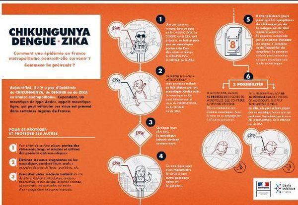 La chaîne de contamination du moustique tigre.