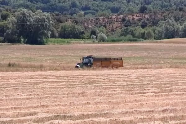 La sécheresse se poursuit en Côte-d'Or (archives - juillet 2015)
