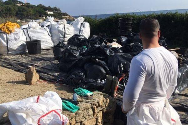 Nettoyage des plages de Saint-Tropez