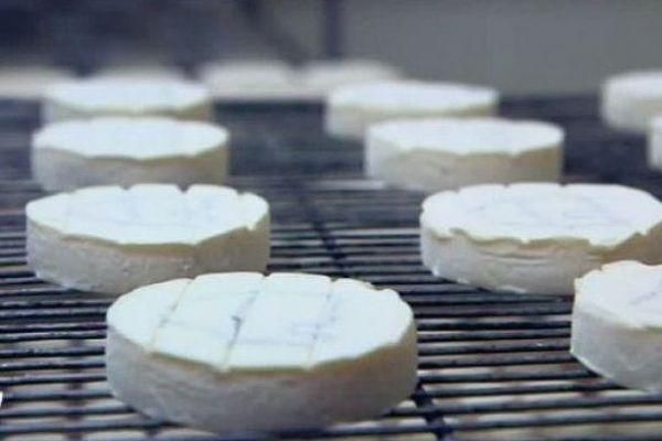 Des fromages Rocamadour AOP, produits dans le Lot.
