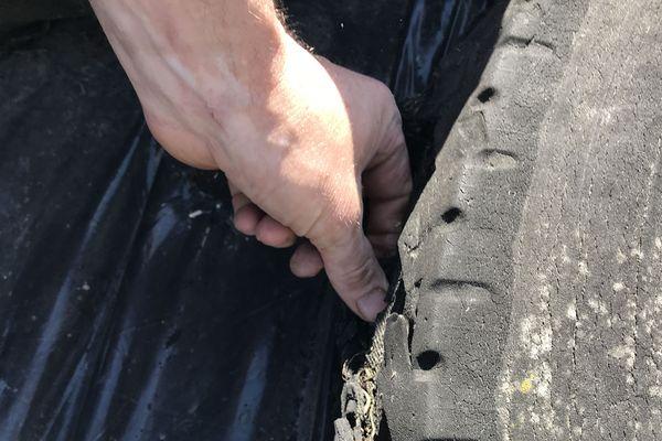 Ces pneus usagés responsables de la mort de bovins