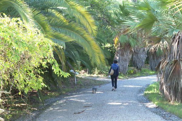 Le jardin botanique de la Villa Thuret que près de 20 000 personnes visitent chaque année pour voir 2000 arbres et 1000 espèces rares.