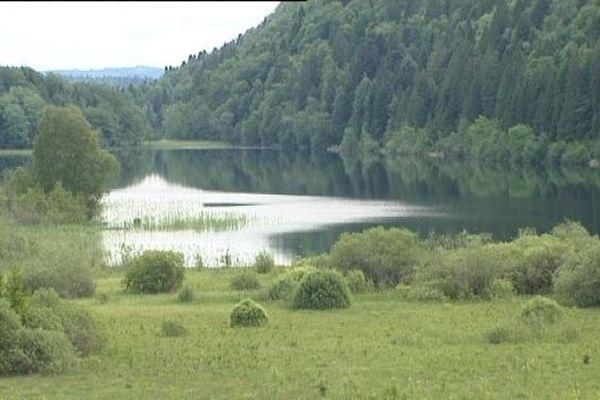 La forêt de Poligny accueillera-t-elle un Center Parcs ? La bataille ne fait que commencer. Le groupe Pierre et Vacances envisage d'ouvrir un sixième Center Parcs à deux heures de Lyon. L'annonce d'études dans le secteur de Poligny provoque une mise en concurrence avec le projet du Rousset en Saône et Loire.