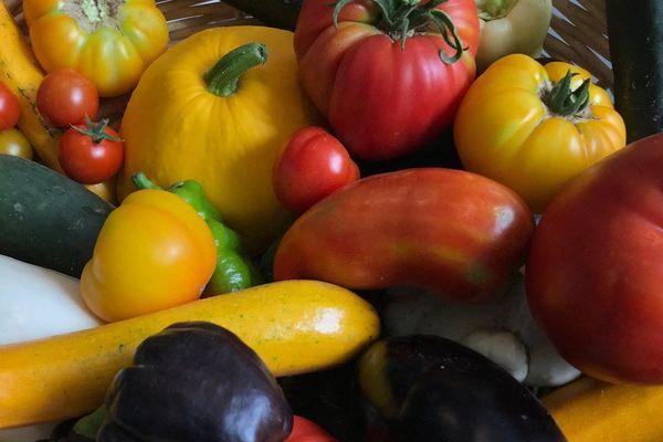 Dans la Manche les banques alimentaires collectent surtout des légumes et des produits laitiers