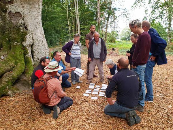 Mickaël partage ses connaissances sur les arbres, lors de visites qu'il organise in situ.