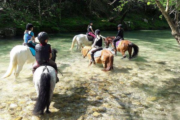 À l'école d'équitation de La Colle-sur-Loup, les cours ont repris depuis le 12 mai mais les compétitions sont toujours suspendues.