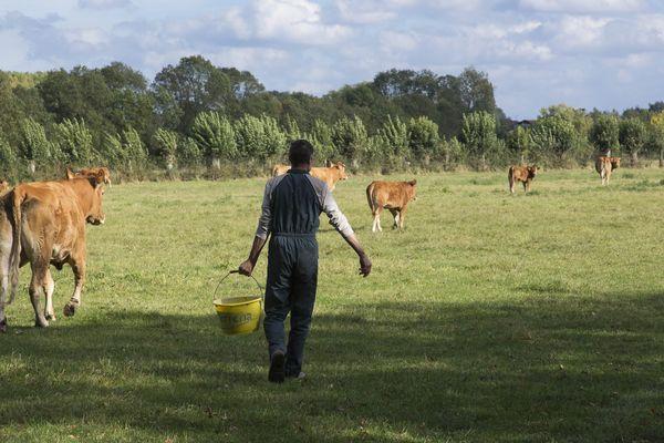L'agriculture manque de bras et lance des opérations séduction pour attirer des candidats