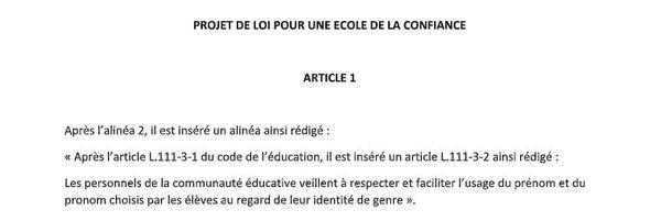 Amendement déposé par le député Raphaël Gérard en février 2019 lors de l'examen du projet de loi pour une école de la confiance.