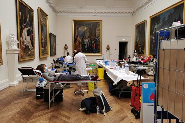 Le musée des Beaux-Arts de Dijon avait lui aussi accueilli une collecte de sang.