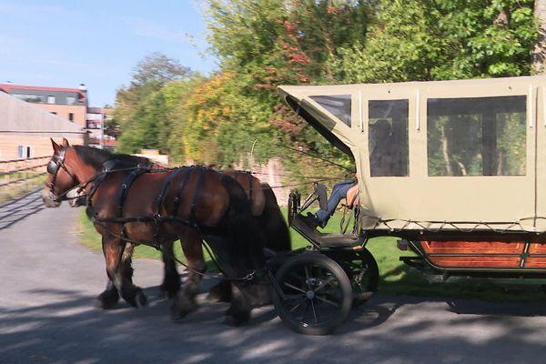 Une calèche pour aller à l'école. A Bachy, ce mode de transport est testé depuis la rentrée