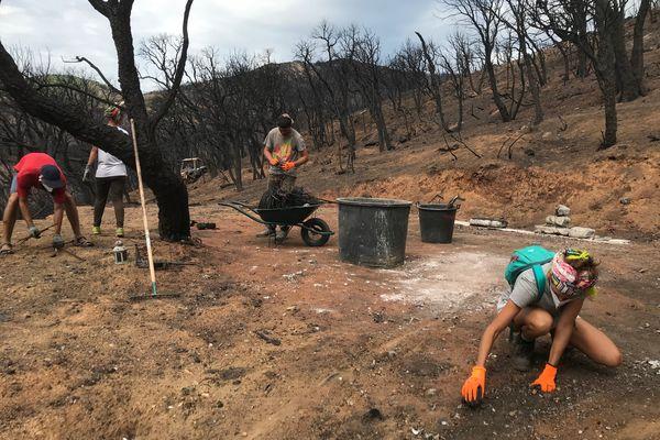 Armés de gants et de brouettes, habitants et bénévoles ramassent les morceaux de métal fondus, sur les hauteurs du hameau du Val de Gilly à Grimaud (Var).