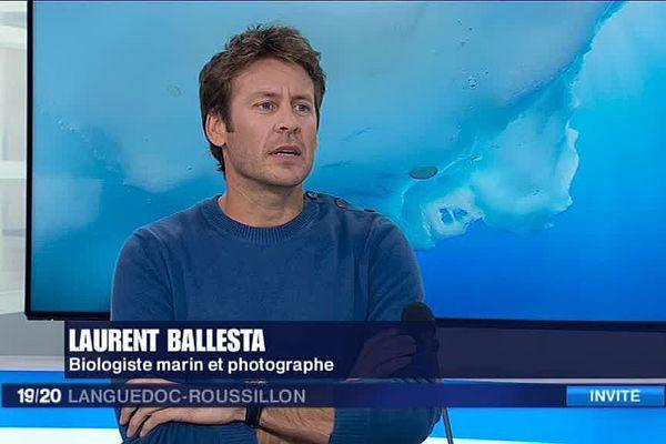 Laurent Ballesta, biologiste et photographe héraultais, invité du JT de F3LR