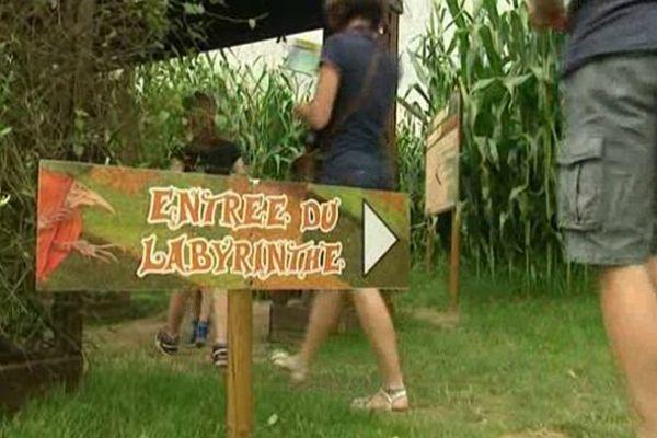Labyrinthe de Beaugency dans le Loiret