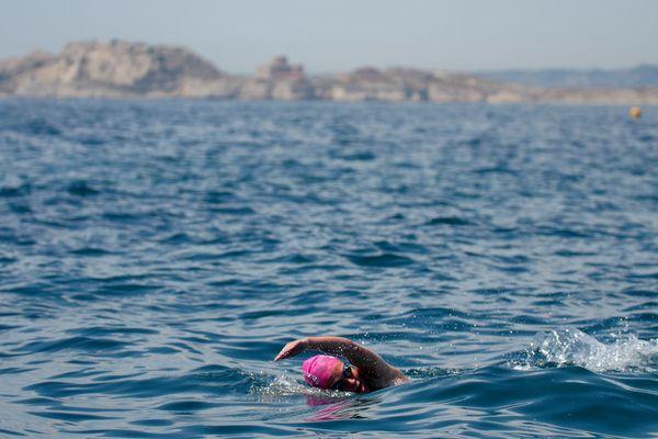Masques, lunettes, tubas... Les nageurs sont libres de choisir leur équipement.