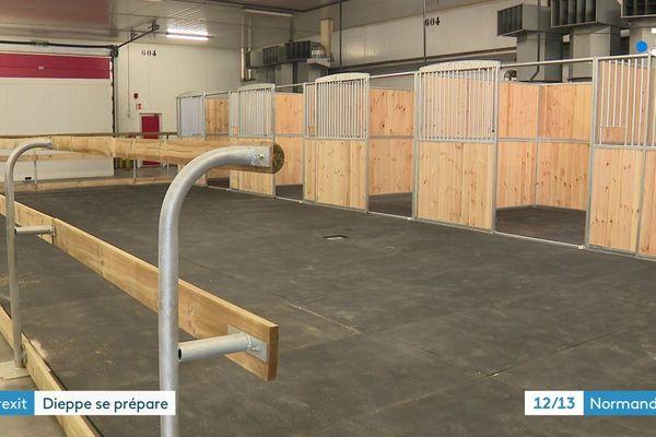 Contrôles douaniers au port de Dieppe : une partie des équipements prévus pour accueillir les chevaux