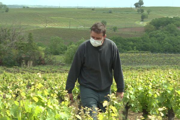 Romain Plageoles dans ses vignes à Cahuzac-sur-Verre