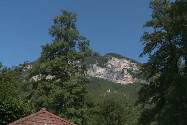 Le Slovène Tadej Pogacar remporte la 15e étape dans l'Ain — Tour de France